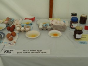 Blanchland Show 2013 020